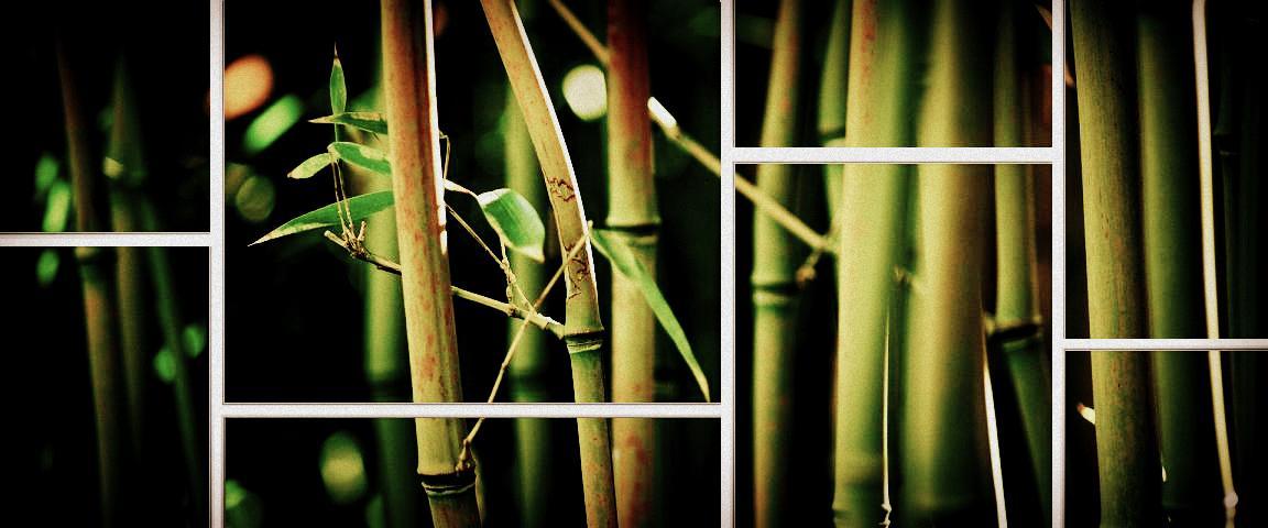 bamboo - Copy